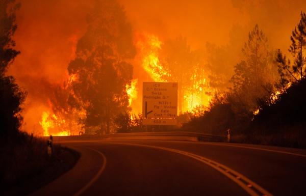 Происшествия: Лесные пожары в Португалии унесли десятки жизней