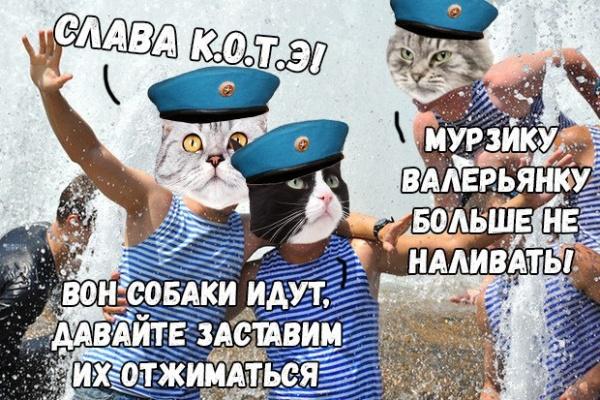 Даты: Международный день кошки