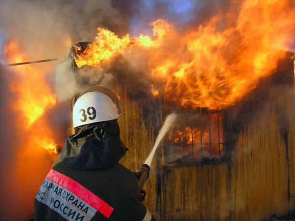 Происшествия: В Волгоградской области из-за пожаров готовы эвакуировать 5 тыс. человек