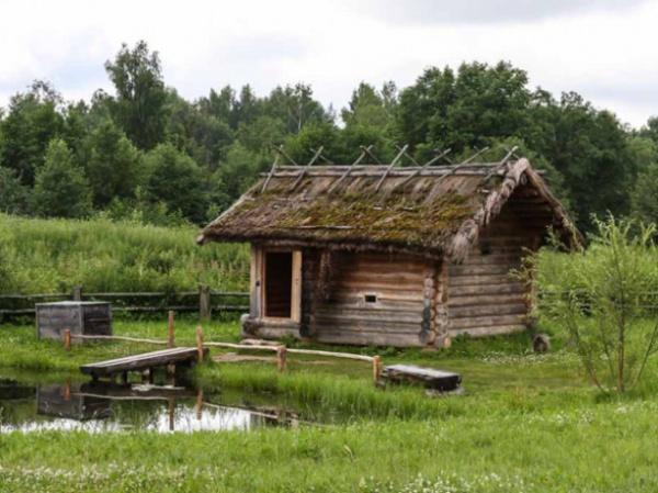 Природа: Хорошо в деревне летом!