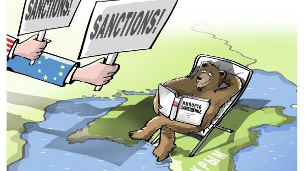 Политика: Маккейн назвал расширение санкционного списка против РФ шагом в правильном направлении