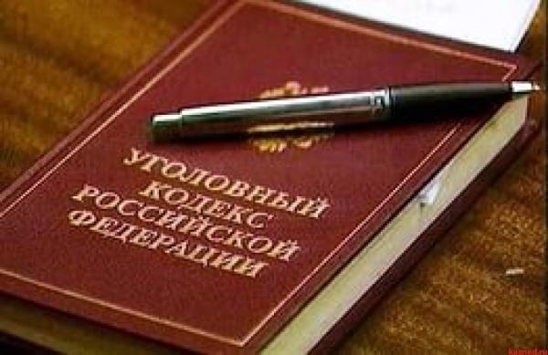 Право и закон: Уголовный проступок может стать частью УК