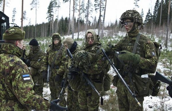 Интересное: Эстонская военная хитрость