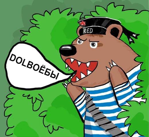 Спорт: Английских фанатов предупредили о возможном нападении медведей на ЧМ-2018