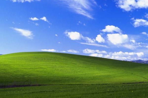 Интересное: Гонорары авторов обоев Windows XP