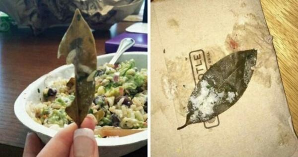 Интересное: Пользователи Twitter жалуются на ресторан, обнаружив лист неизвестного происхождения