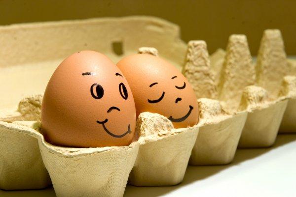 Интересное: Куриные яйца. Как они появились на нашей кухне