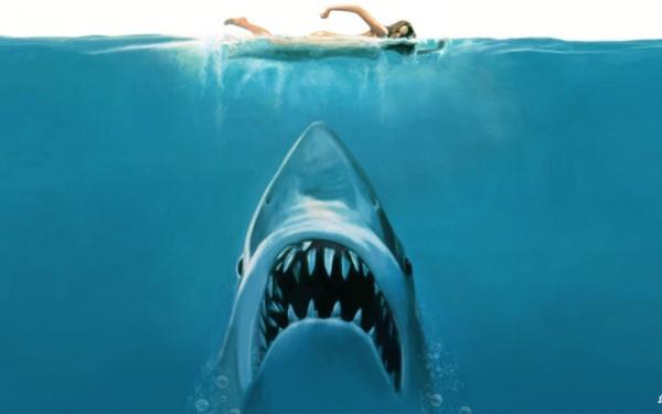 Происшествия: Акула-людоед, или как хищник держал в страхе все Атлантическое побережье