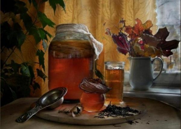Здоровье: Мифы о чайном грибе