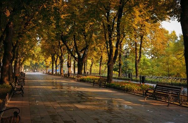 Реклама: Бархатный сезон в Одессе: путеводитель для туриста
