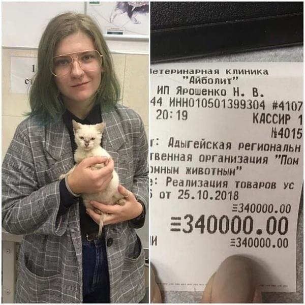 Общество: Неизвестная девушка погасила долг приюта для животных в 340 тысяч