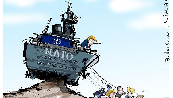 Политика: До эстонцев дошло: они должны гибнуть за американцев, а не наоборот