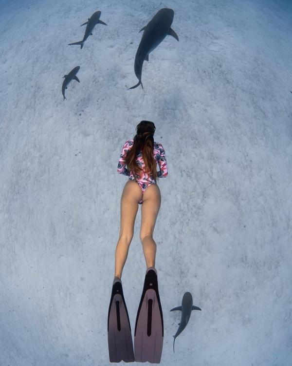 Картинки: Подводная красота