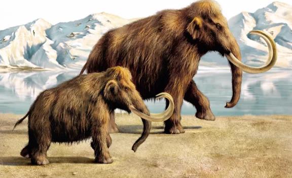 Животные: Когда вымерли мамонты?