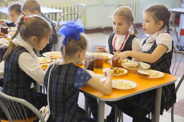 Право и закон: В Госдуму внесен законопроект об обязательном горячем питании в начальной школе