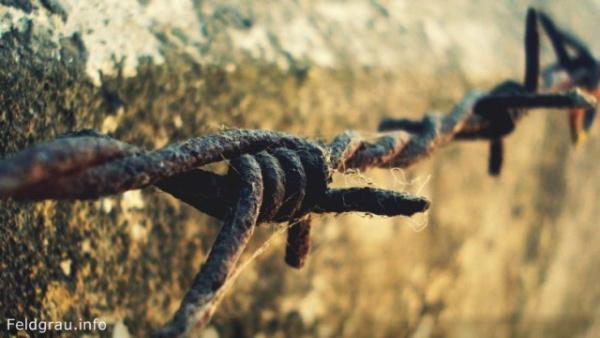 История: Как американские фермеры организовали телефонную сеть на колючей проволоке