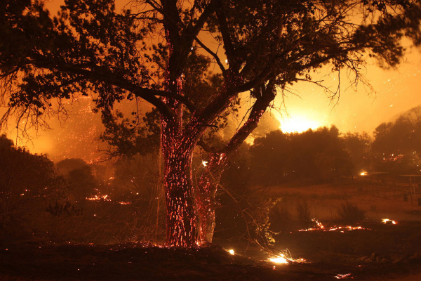 Картинки: Грозная красота калифорнийских пожаров