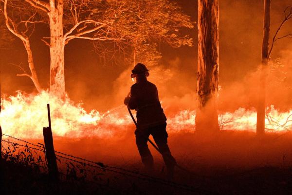 Природа: В Австралии бушуют лесные пожары