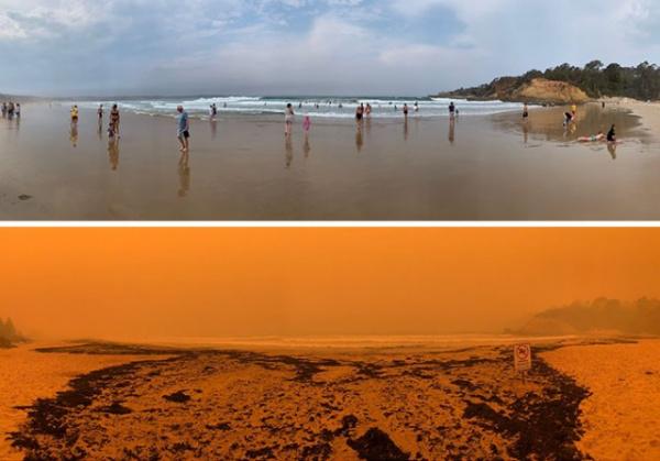 Происшествия: Пожары в Австралии. До и после