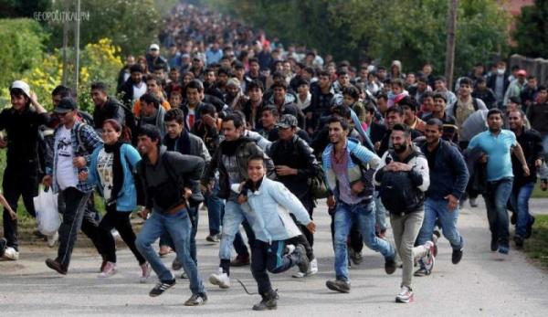 Право и закон: Какие изменения  ждут мигрантов в разных странах в 2020 году