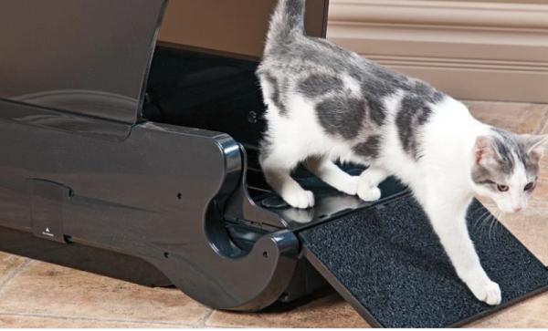 Реклама 5: Как выбрать лоток для кошек