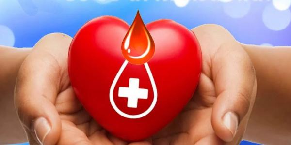 Здоровье: Инструкция - как сдавать кровь
