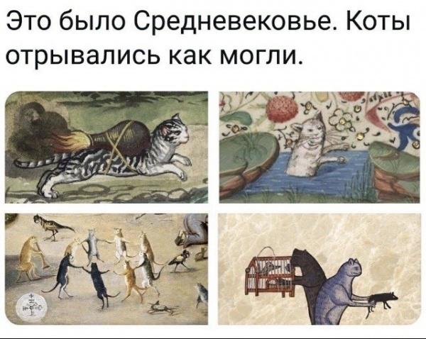 Картинки: Подборка интересных и веселых картинок