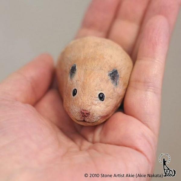 Картинки: Живые камушки. Аки Наката