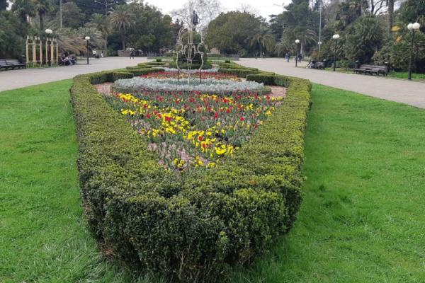 Блог djamix: *Нерабочая неделя* в Сочи