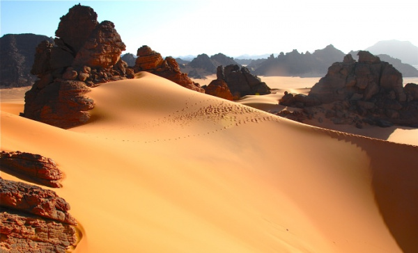 Природа: Как изменилась Сахара за последние тысячелетия