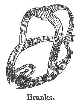 История: Как в Средние века наказывали сплетниц