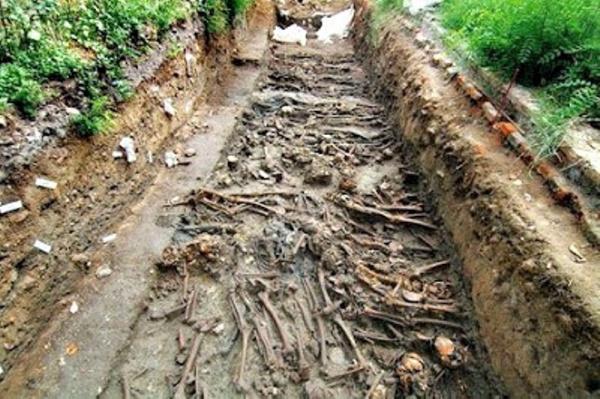 Коронавирус: Остров Харт - остров мертвых