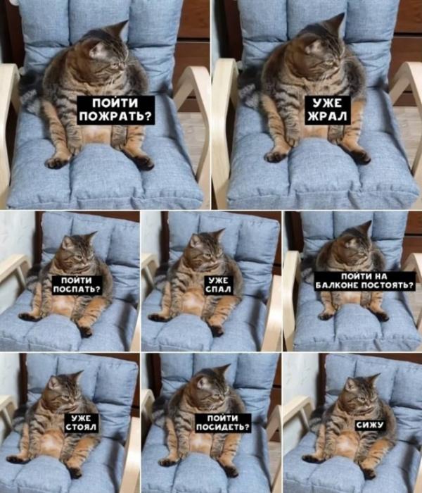 Юмор: Пятничная подборка смешных картинок :-)