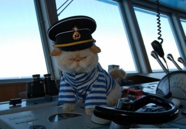 Интересное: Эй, моряк, ты слишком много плавал!