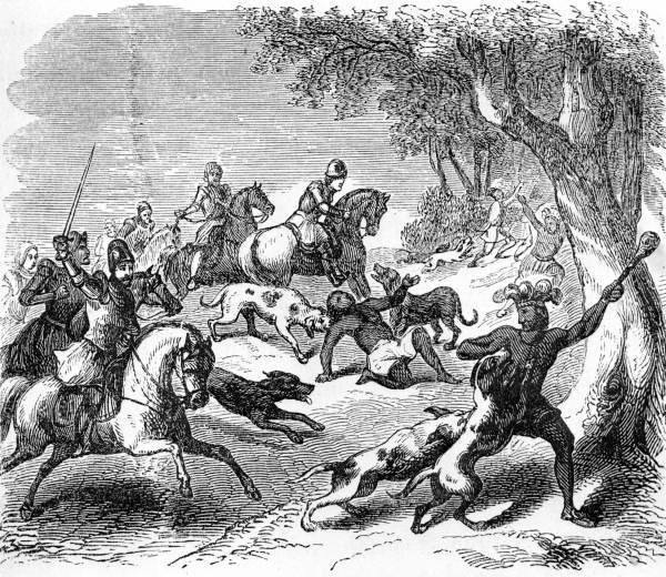 История: Оружие конкистадоров - боевые собаки