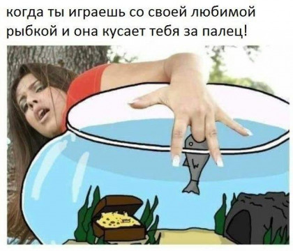 Юмор: Смешные картинки, иногда пошлые :-)