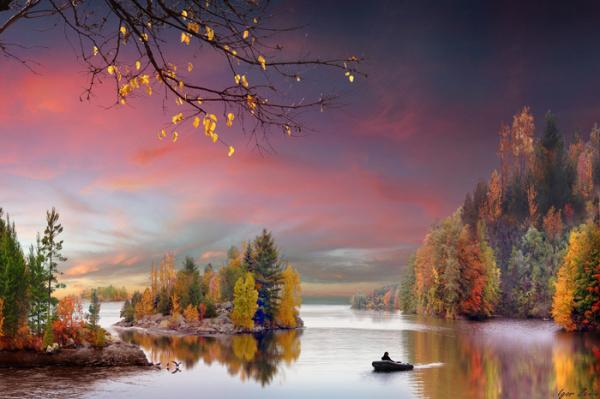 Картинки: Осень