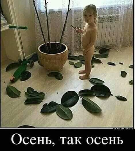 Юмор: Смешные и интересные картинки на вторник :-)