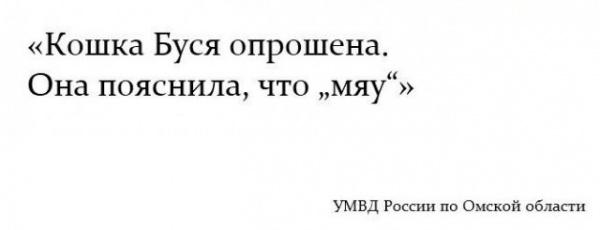 Юмор: Чутка смешных картинок :-)