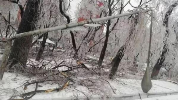 Природа: В Приморье из-за непогоды ввели режим ЧС
