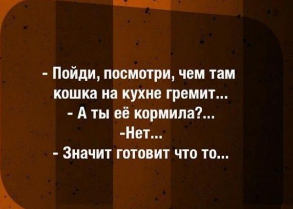 Картинки: Прикольные картинки :-)