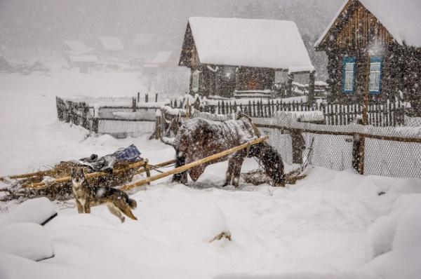 Картинки: Деревенская зима