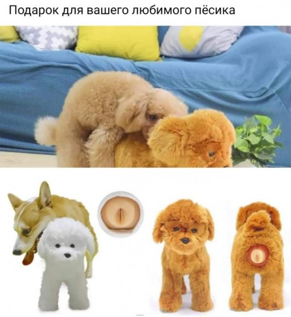 Картинки: Подборка интересных и смешных картинок на понедельник:-)