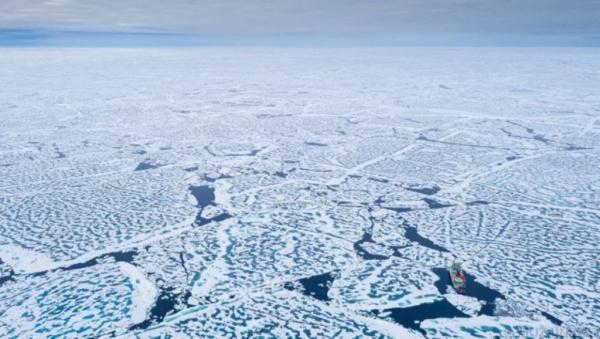 Интересное: Интересные факты о Северном полюсе