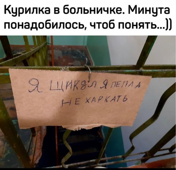Юмор: Новая порция смешных кретинок :-)