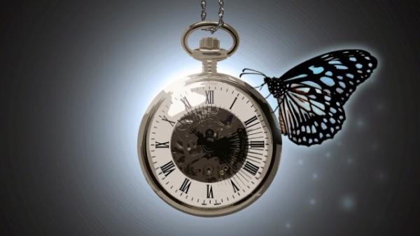 Интересное: Эффект бабочки или пять реальных случаев, изменивших ход истории