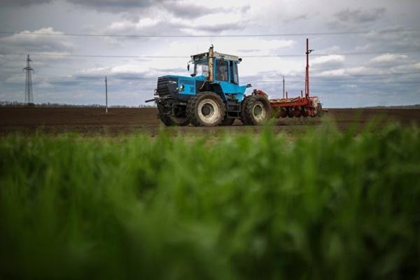Экономика: ЕС стал главным покупателем российской сельхозпродукции