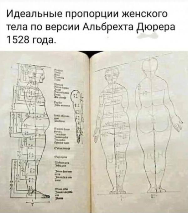 История: Идеальное женское тело :-)