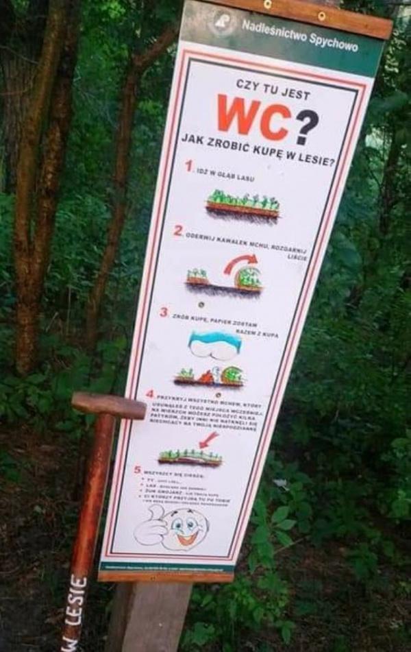 Разное: *Как какать в лесу?* — в Польше установили информационные таблички о правилах какания на природе