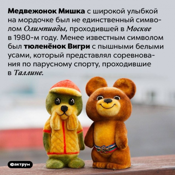 Интересное: Олимпийский Мишка и тюленёнок Вигри